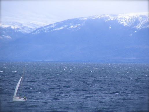sailing+cape+horn